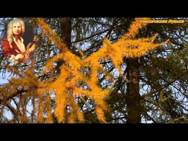 АНТОНИО ВИВАЛЬДИ - Времена года. Концерт для скрипки соль минор, RV 293 'Осень' - III. Аллегро