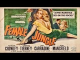 Female Jungle (1955 - 1956) Jayne Mansfield