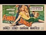 Female Jungle (1955 - 1956) Jayne Mansfield