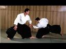 Clases de Aikido asistente. Mira y aprende. 013