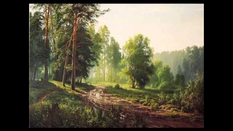 С Басов Пейзажі