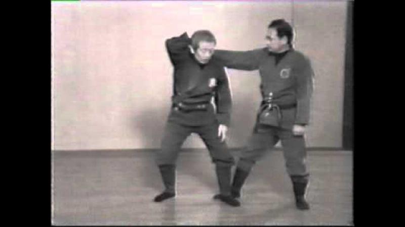 忍術 Hatsumi Togakure Ryu Ninpo Taijutsu