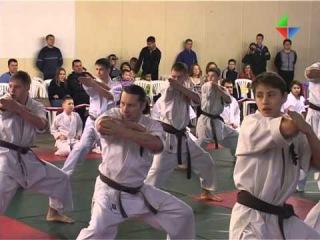 Большим открытым турниром школа каратэ «Бонсай» отметила свое 20-летие