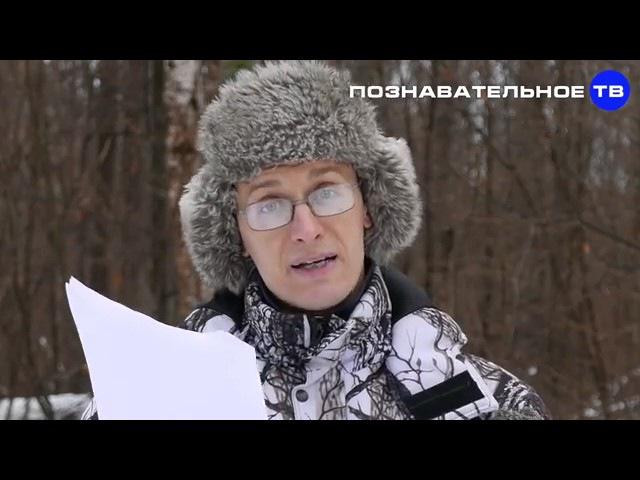 Русский вопрос ч.5 Как евреи создавали псевдонаучную исТОРию, 2ой приоритет ОСУ ( ...