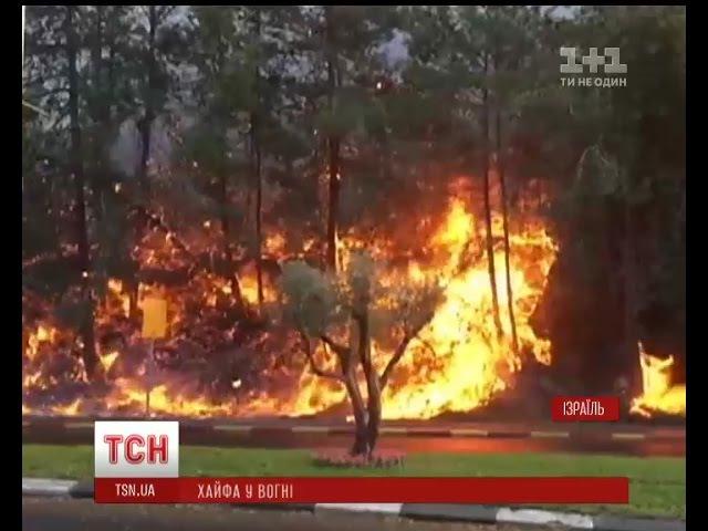 Масова евакуація в Ізраїлі палає одне з найбільших міст країни