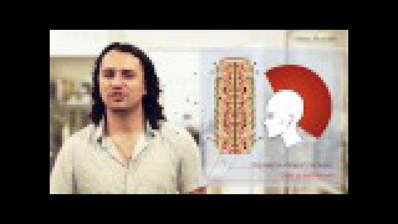 Алексан Мусаелян Колористика Урок№7 Декапирование Смывка краски с волоса