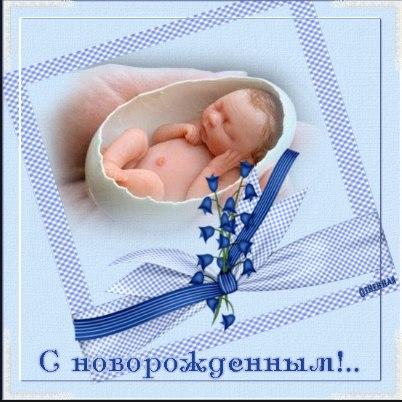 LY9moqlypF0.jpg