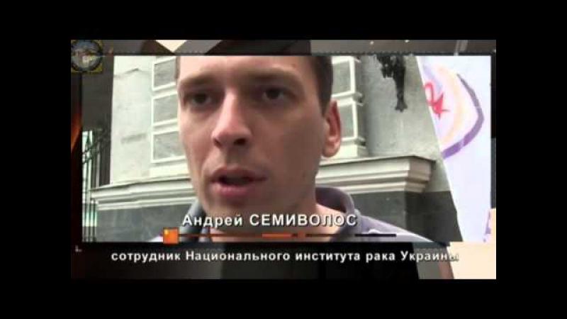 МАРАЗМ Швондеры 21 века Украинская люстрация через линчевание