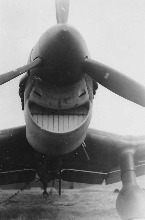 Немецкий пикирующий бомбардировщик Ju-87.
