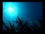 Leon Bolier Feat supersesa - Poseidon