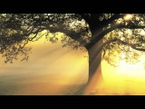 Mantra for Compassion and Healing - Guru Ram Das Chant by Mirabai Ceiba