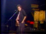 Neil Young - Little Thing Called Love (Live in Berlin 1982)