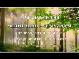 Медитация САРКОФАГ - Василий Попов