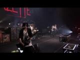 the GazettE - live tour 12-13 [DIVISION] FINAL MELT LIVE AT 03.10 SAITAMA SUPER