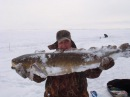 Налим 5500 зимняя рыбалка в Карелии. Fishing for Burbot in Karelia