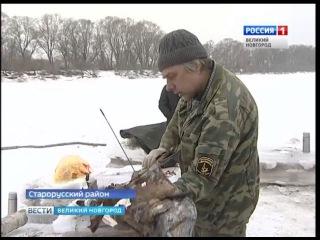 ГТРК СЛАВИЯ Подъем самолета ЛАГГ 3 со дна Ловати 17 02 17