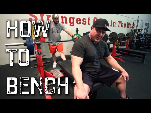The Definitive Guide to Bench Press Like a Beast l Stronger in 30 Days