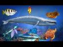 Морские животные - познавательное видео для детей. Жители моря и океана.