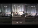 Sony A6300 Low Light Test and Comparison with A7s and Canon 5D Mark iii