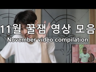 November video compilation 11월 꿀잼 비디오 모음집 [GoToe COMPILATION]