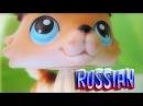 Littlest Pet Shop Popular Episode 7 В Любви и на Войне Все Средства Хороши RUS Русская озвучка