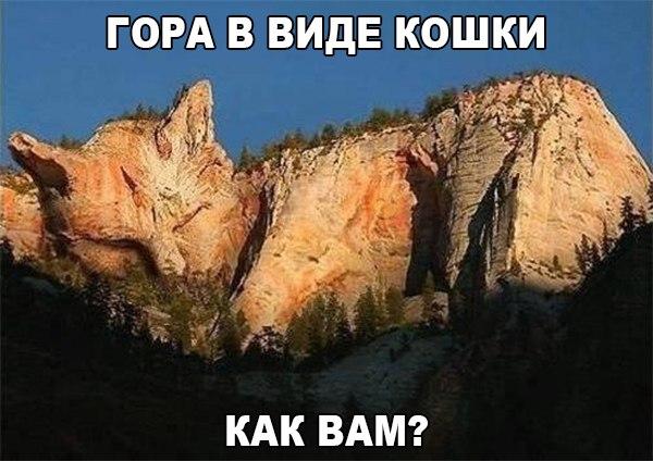 Фото №456261310 со страницы Марины Явтушенко