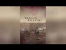 Галлиполийская история 2015 Deadline Gallipoli