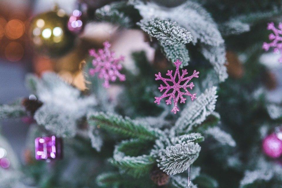 Новогодние фотографии. Часть вторая: скачать бесплатно