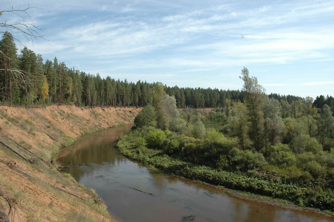 Река Боровка. Среднеборовский яр
