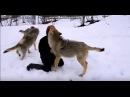 Животные встречают хозяев после долгой разлуки. ОЧЕНЬ ГРУСТНОЕ ВИДЕО
