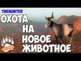 theHunter Classic - Охота на диких коз - смотрим обновление!