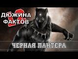 12 Фактов о Чёрной Пантере