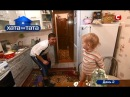 Пока папа убирал клетку хомяка маленькая дочь искупала животное в…сметане