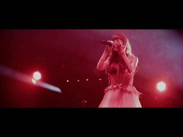 Aimer『Brave Shine』(Aimer Live Tour DAWN)