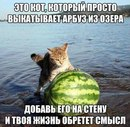 Михаил Митянин фото #36