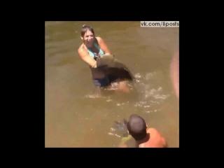 Девушка поймала рыбу сома на свою руку / Girl Catches Fish With Bare Hands