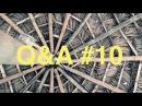 [NV080] Joga, WOŚP i skąd mam pieniądze? (QA10)