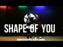 Shape of YOU - Ed Sheeran Dance Routine choreographer Kolya Barni