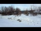 26 января поездка на пасеку и проверка зимовки пчел Карники F1 под снегом и в зимов...