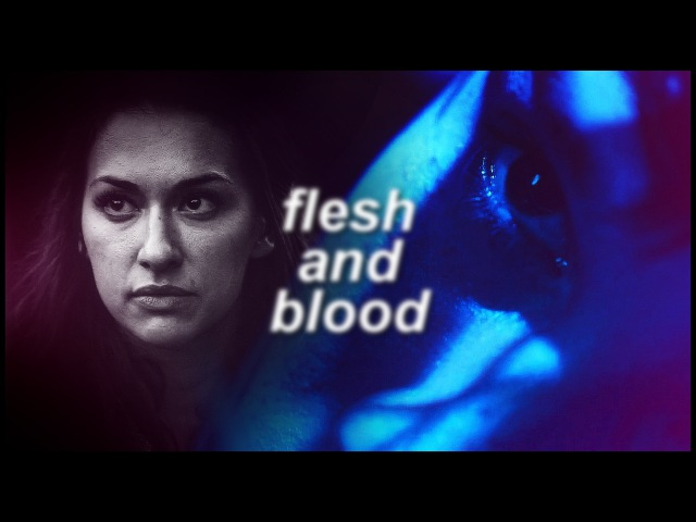 Bellamy echo | flesh and blood
