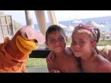 Türkçe izle - kız erkek çocuk oyunları/videoları.Tavuk ve sürpriz yumurta 2. Çevrimiçi