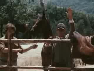 В поисках капитана Гранта (1985) 3 серия [ Советское кино, Кинолюкс ]