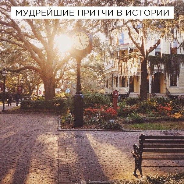 Фото №456264196 со страницы Ани Петрухиной