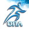 Балашихинская Мини-Футбольная Любительская Лига
