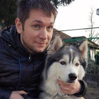 Алексей Комраков  Shark