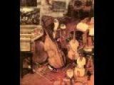 J. S. Bach - Concerto n. 4 per pianoforte, archi e basso continuo BWV 1055