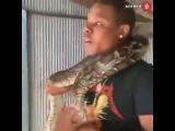 Начал паниковать когда змея обхватила шею пока киска порно школьница малолетка молоденькая секс ебля трах вписка анал сиськи писька грудь геи пидр прикол юмор