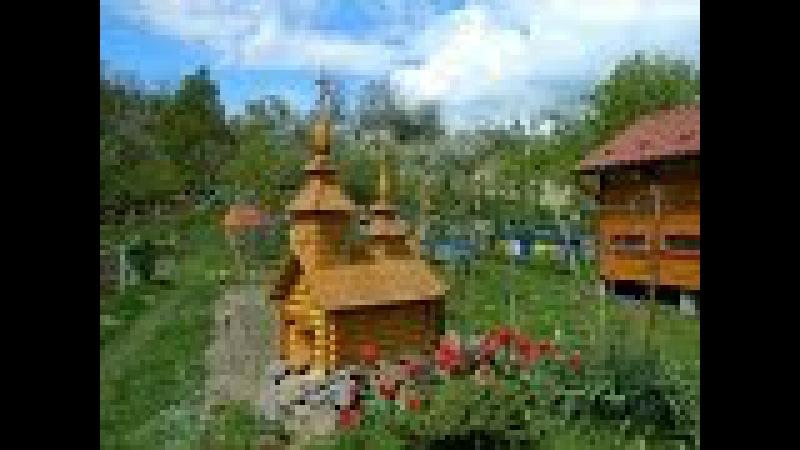 Вывод маток Дочинец Василий Николаевич о выводе пчелиных маток