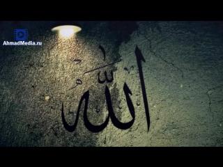 Говори благое или молчи. Шейх Хасан Али. [AhmadMedia.ru]