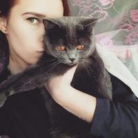 Анкета Татьяна Клименко